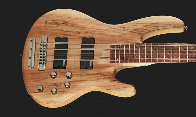 8-Saiter Bass