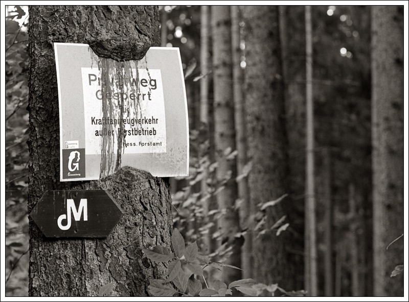 20140804-Privatweg02.jpg