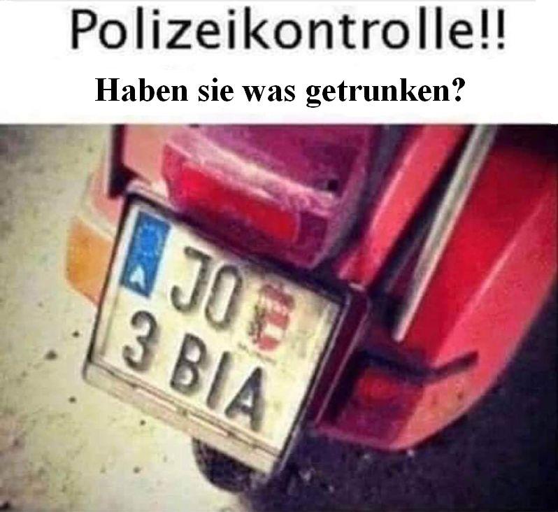 Polizeikontrolle.jpg