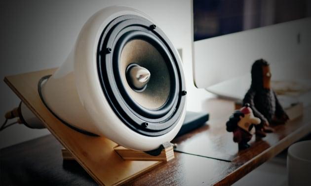 speaker-jpg.368318