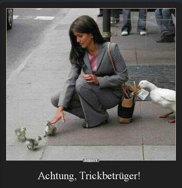 Trickbetrueger.jpg
