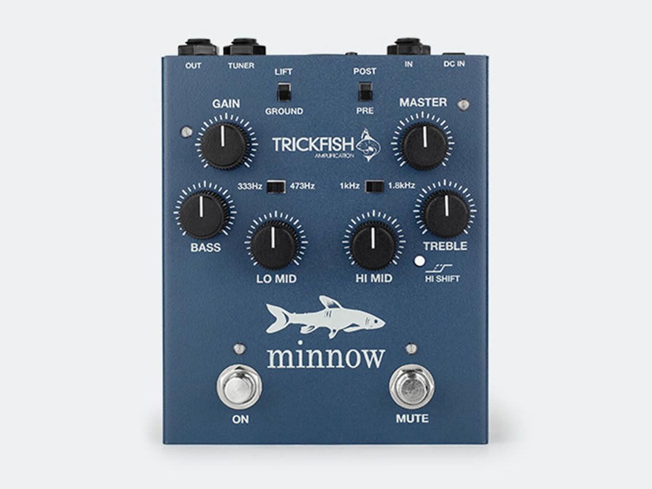 trickfish-minnow@1400x1050.jpg