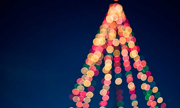weihnachtsbaum-weihnachtsbeleuchtung-weihnachten