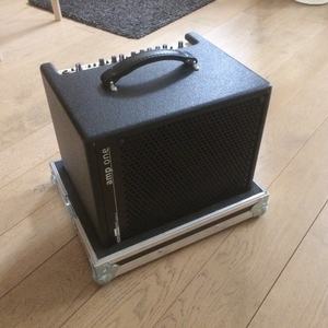 AER Amp One + custom flightcase