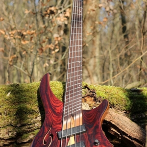 Dingwall Afterburner II 5X ABII Special Edition Run, Cocobolo Top